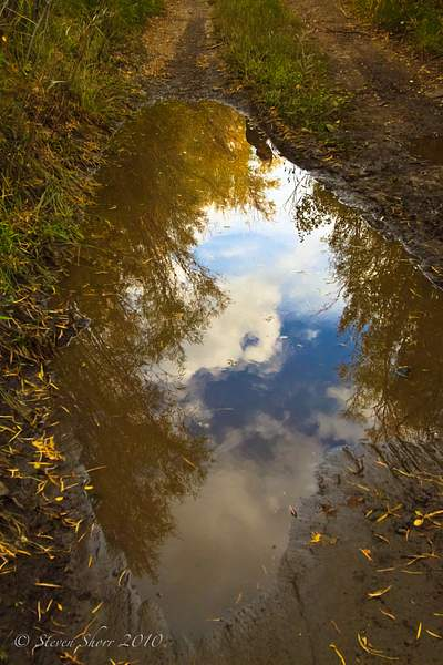 Reflecting_on_a_Puddle 222