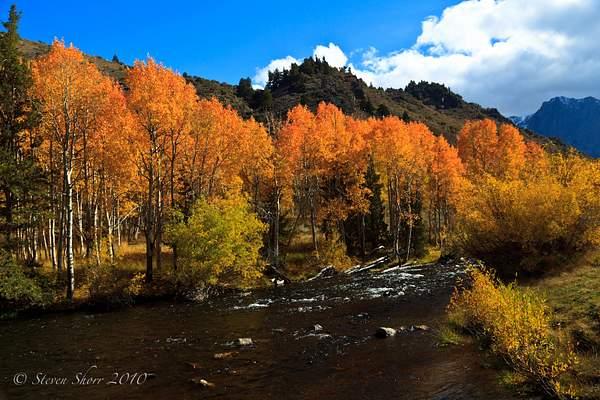 Fall_Colors_9 222