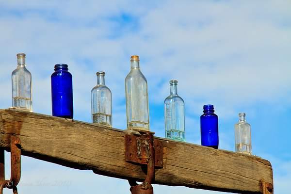 Elmer's Bottle Farm-3 222