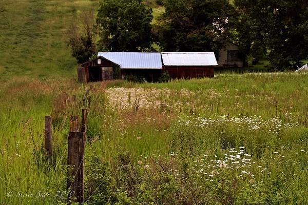 Old Barn 1 222