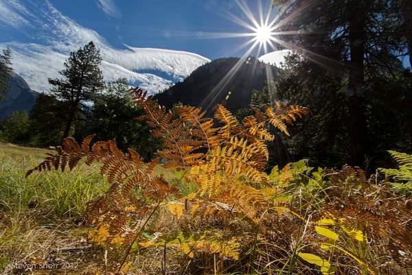 Yosemite 2012-13 222