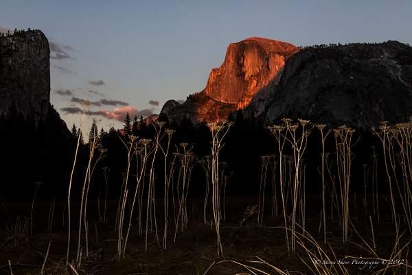 Yosemite 2012-28 222