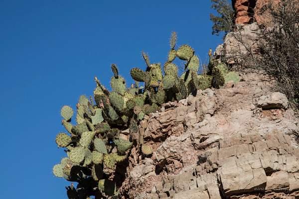 Val Verde Canyon-16 222