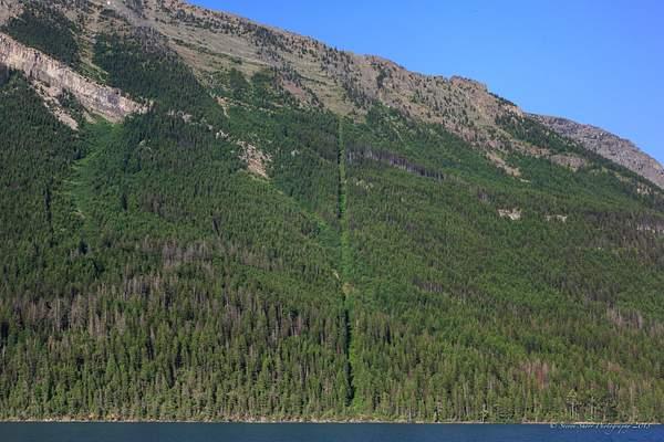 US Canada Border from Waterton Lake 222