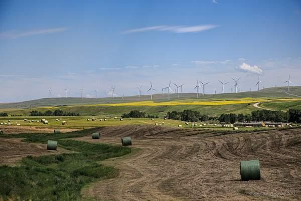 Southwest Alberta-1 222