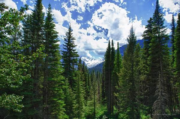 Glacier National Park 2 222