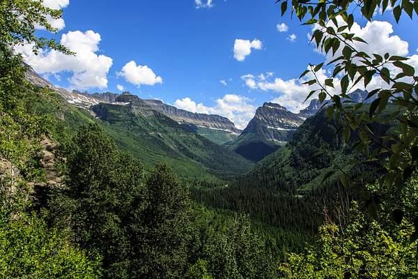 Glacier National Park-1 222
