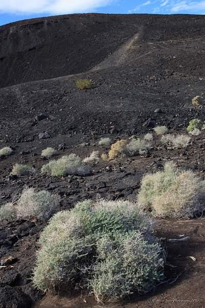 Pisgah Crater-1 222