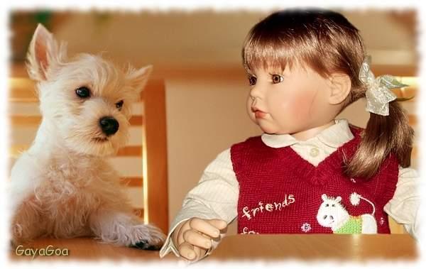 Nika_and_dog