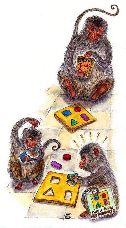 monkeygames