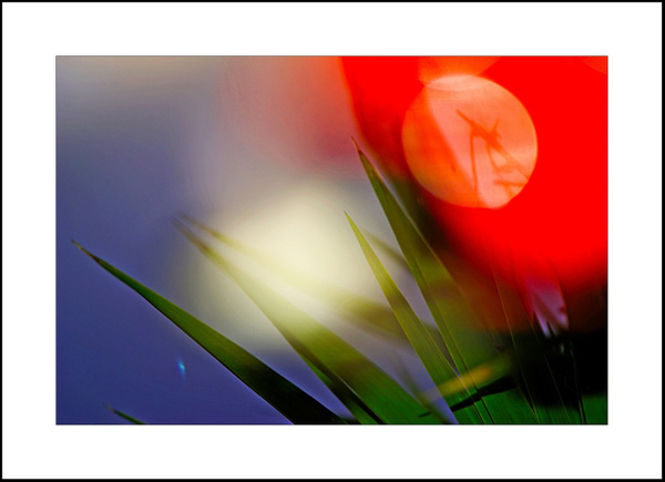 Abstract in front of my house by Gino De  Grandis