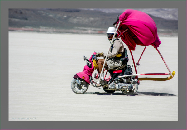 Desert Pink by Gino De  Grandis