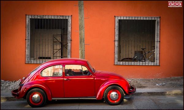 Red Bug- Mexico by Gino De  Grandis