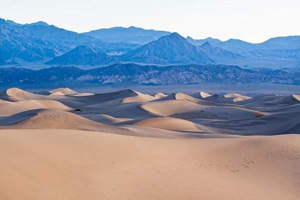 Dunes 6.jpg 222