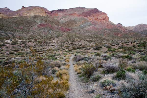 Colors in the desert - Titus Canyon.jpg 222