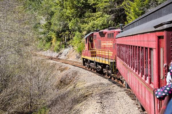 Skunk Train.jpg 222