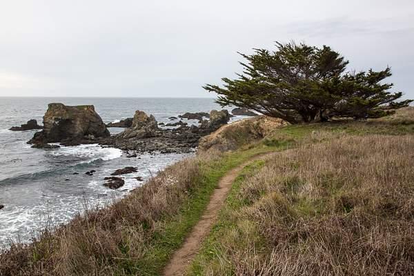 California Coast-1.jpg 222