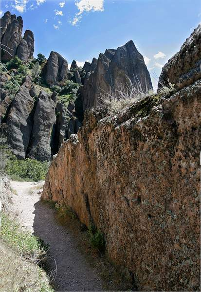 Narrow Path 222