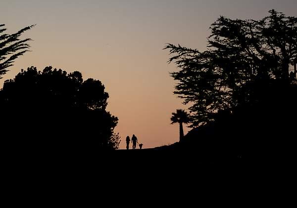 Night Walk in Cambria.jpg 222
