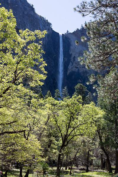 BridalVail Falls from pull-out on Southside Dr.jpg 222