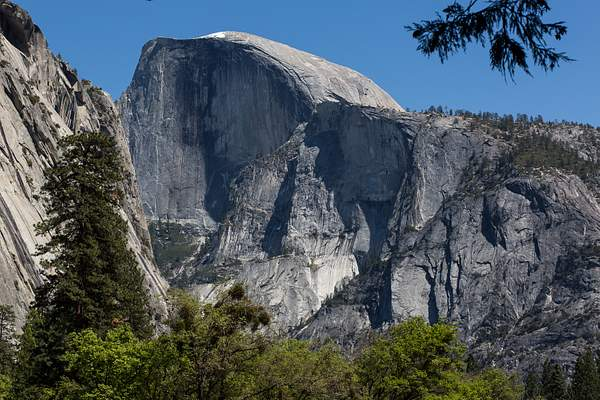 Half Dome Close-up from Meadow Just West of Awahnee Hotel.jpg 222
