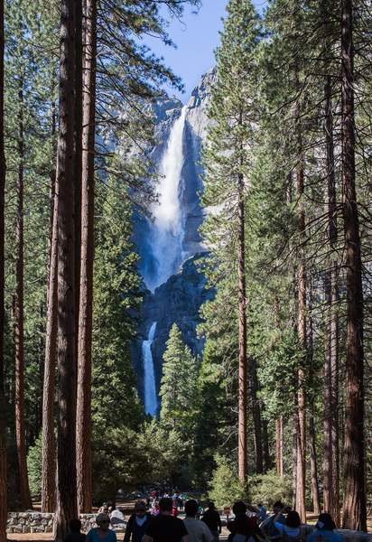 Classic View of Yosemite Falls from Path to foot of Falls.jpg 222