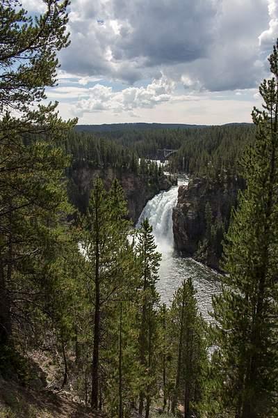 Lower Falls Yellowstone River.jpg