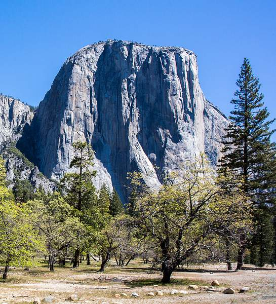 El Capitan from Southside Drive-Find the Juxtaposition.jpg 222
