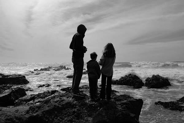 Mesmerized Ocean Watchers.jpg