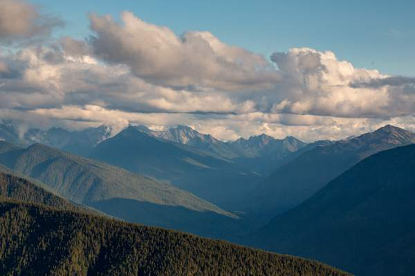 Olympic Mountains from the North 1.jpg 222