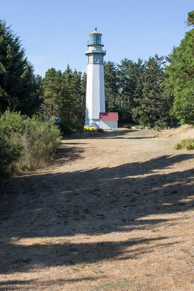 Lighthouse in the woods.jpg 222