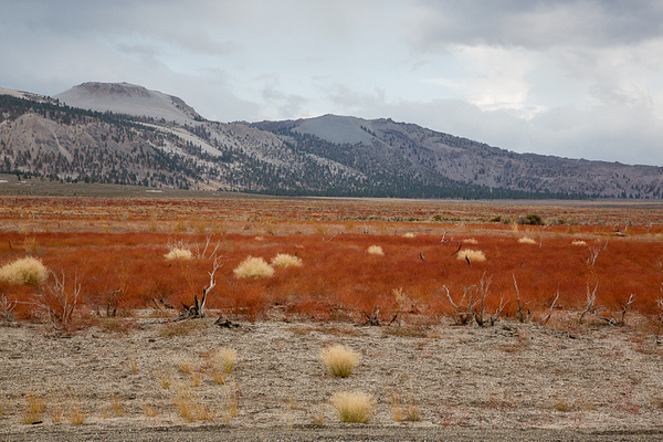 Eastern Sierra & Hwy 395 by Harrison Clark