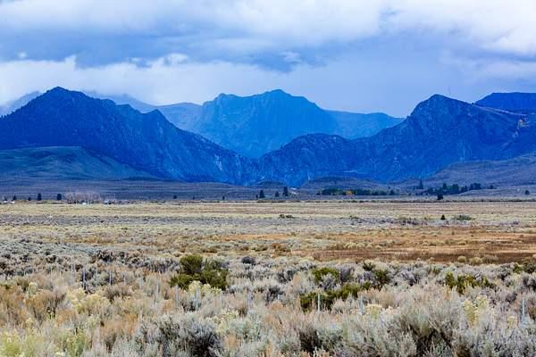 Colorful High Desert South of Lee Vining (7100').jpg