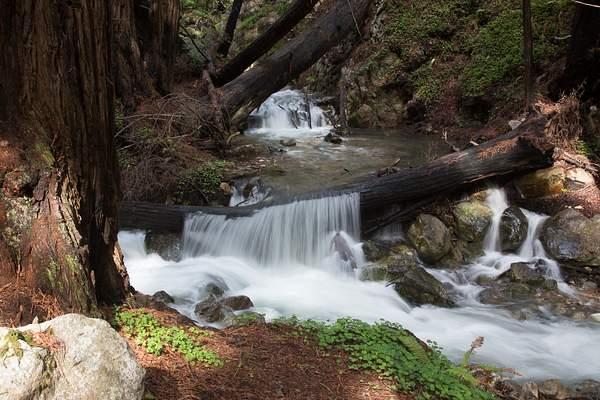 Limekiln State Park-11 222