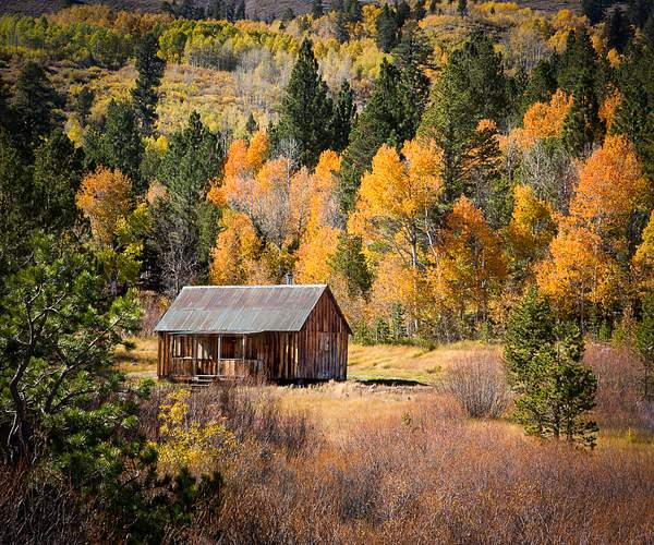 Carson Pass Cabin in Fall