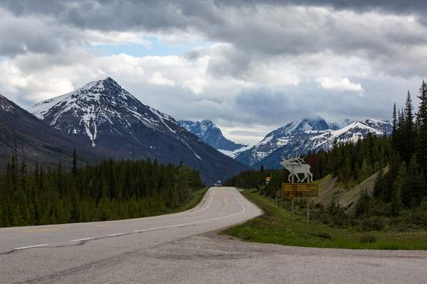 Closer to Banff.jpg 222