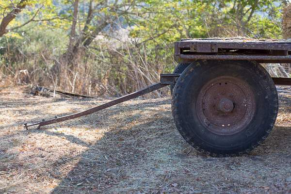 Wagon for Big Kids 222