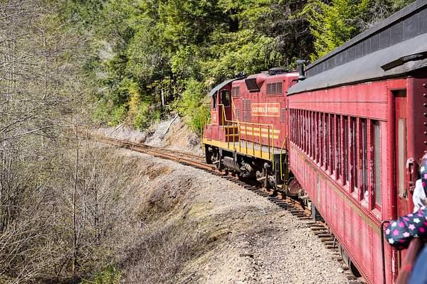 Skunk Train 222