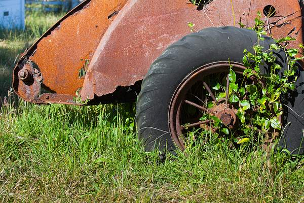 Point Reyes June 2010-39 222