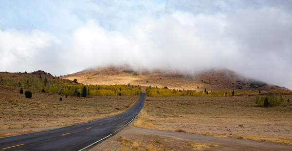 Hwy 89 Monitor Pass  9000'