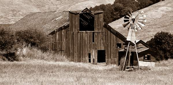 Barn and Windmill Near Point Reyes 222