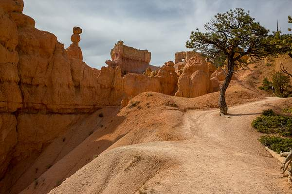 Bryce Canyon-5 222