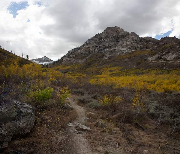 Ruby Mtns-7