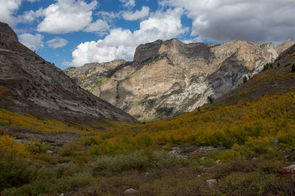 Ruby Mtns-4 222