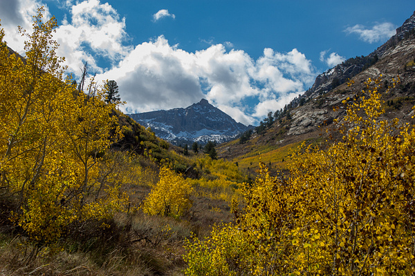 Ruby Mountains by Harrison Clark