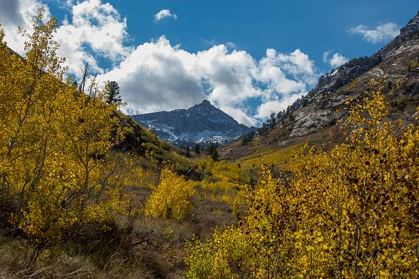 Ruby Mtns-1 222