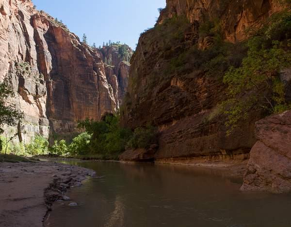 Zion Canyon-10 222