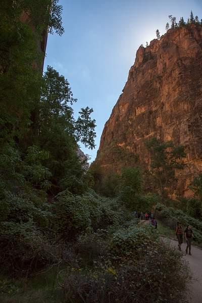 Zion Canyon-6 222