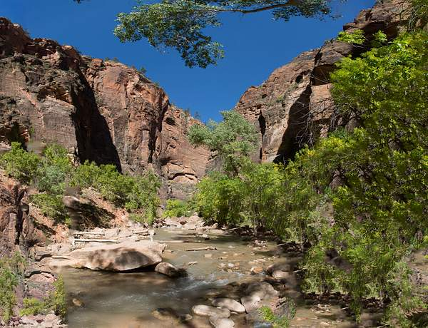 Zion Canyon-5 222
