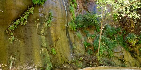 Zion Canyon-4 222